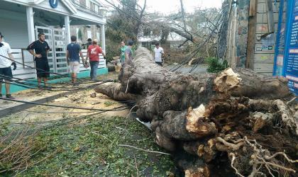 Hurricane Irma destruction on St. Thomas – Photo by Chris B. Pye