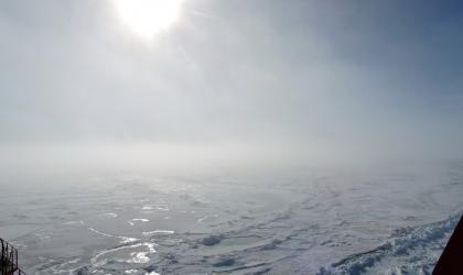 Arctic summer