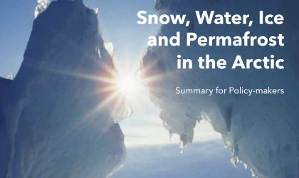 Snow, Water, Ice and Permafrost in the Arctic