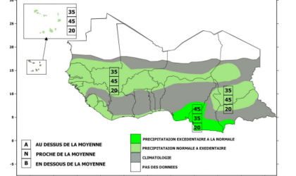 Precipitation forecast for Sahelian strip June-July-August 2020