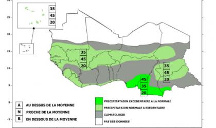 Precipitation forecast for Sahelian strip June-July-August 2020