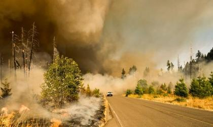Climate change increases the risk of wildfires: ScienceBrief review update