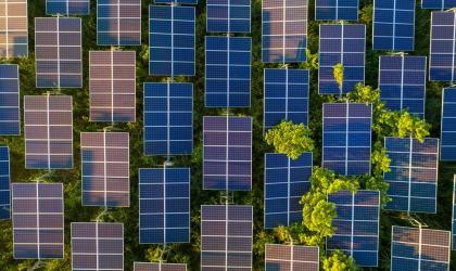 IEA report: pathway to net zero by 2050