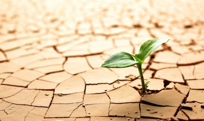 Building drought resilience to reduce poverty