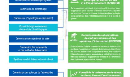Réforme de l'OMM: commissions techniques et autres organes