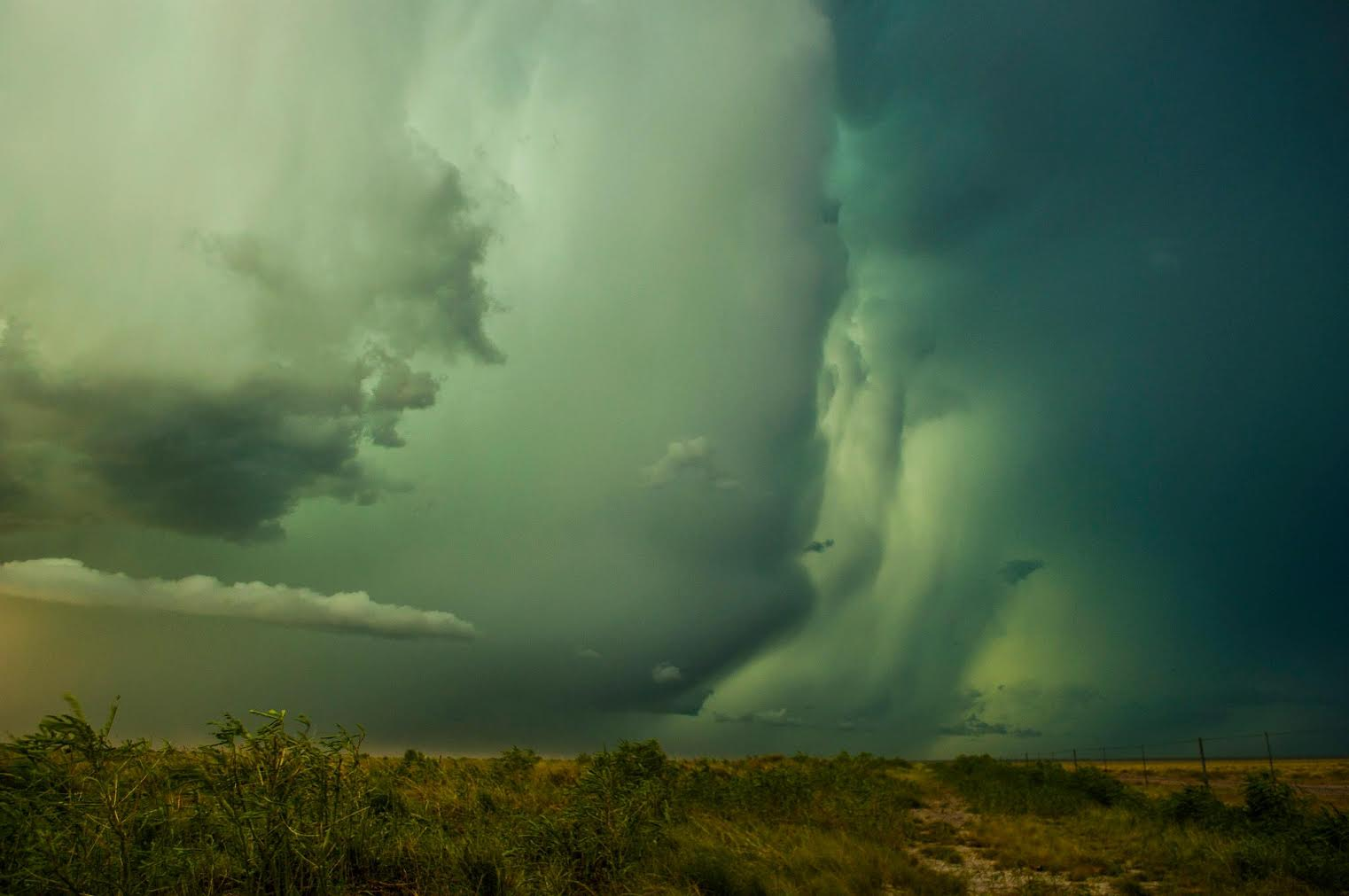 James Taylor Title: Roebuck Rainshaft Australia